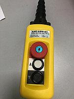 Пульт 2 кнопочный, 2 ступенчатые кнопки XАС-A2913Y