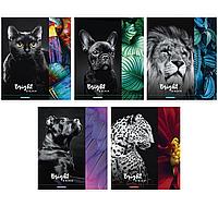 """Тетрадь общая ArtSpace """"Животные. Bright&black"""", А5, 48 листов в клетку, на скрепке"""