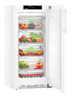 Холодильник с камерой BioFresh Liebherr B 2830
