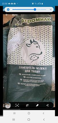 Сухое молоко Агромилк 12% с 30 дня выпойки, фото 2