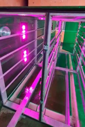 Гидропоника (Аэропоника) - МГУ - мобильная гидропонная установка, производительностью от 60 кг