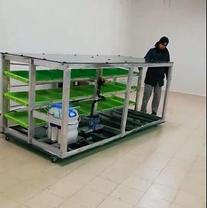 Гидропоника (Аэропоника) - МГУ - мобильная гидропонная установка, производительностью 80, 100 кг, фото 2