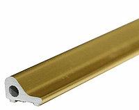 Профиль порожек для душевой DG-4 2200 мм. | FGD-269 TP | золотой