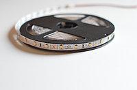 Светодиодная лента 2835 Gstep  0612 (теплый белый) 5 Вт/м