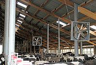 Циркуляционные вентиляторы с трехфазным двигателем для вентиляции доильных залов