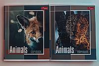 Тетрадь общая 96 листов клетка А5 Magister Animals