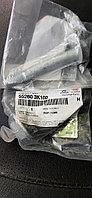 Болт заднего рычага/эксцентрик 55260-3K100