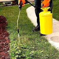 Уничтожение сорной растительности (сорняков) и внесение удобрений для газона