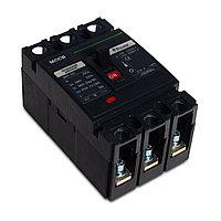 Автоматический выключатель iPower ВА57-225 3P 200A