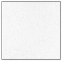 Потолочная плита Retail (595*595) без каркаса