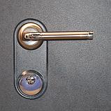 Дверь ОМЕГА, фото 3