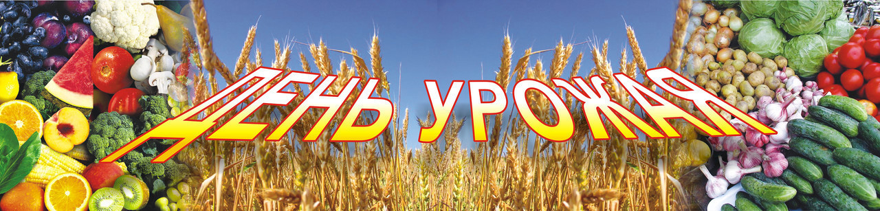 Баннер День урожая 5*1,2 м