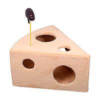 Когтеточка - лежанка домик Сырный ломтик 7 Котиков