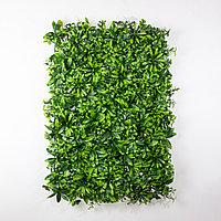 Коврик Клевер, Шефлера искусственный, (L60см, W40см), зеленый