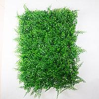 Коврик Туя, Вьюн искусственный, (L60см, W40см), зеленый