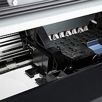Латексная печать на холсте