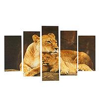 "Картина модульная на подрамнике ""Звериная нежность"" 2-25х52, 2-25х66,5,1-25х80, 80*140 см"