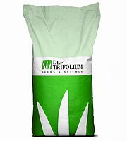 Семена газонной травы SUN 20 кг. DLF
