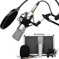 Микрофон студийный Takstar SM-10B-M