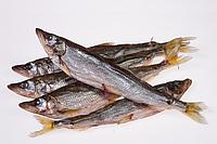 Технология вяления рыбы
