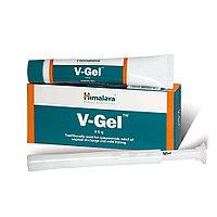 Ви-гель (V-gel)
