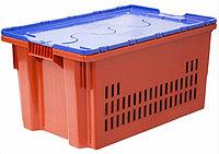 Ящик с крышкой п/э 600*400*350 дно спл., стенки перф., красный с синей крышкой Safe PRO