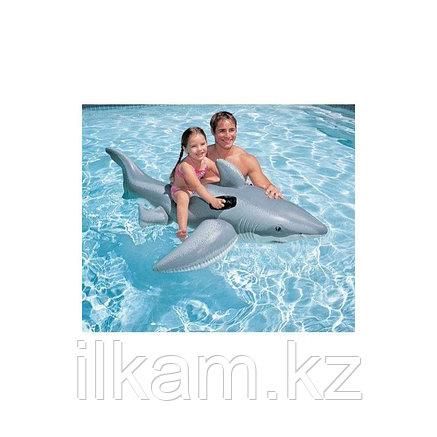 Детская надувная Акула, Bestway 41032, размер 185 х 112 см, фото 2