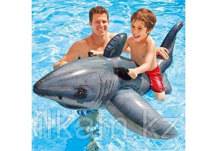 """Надувная игрушка """"Акула"""" Intex 57525, фото 2"""