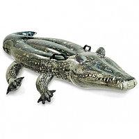 Надувная игрушка Крокодил INTEX, 170 х 86 см, от 3 лет, 57551