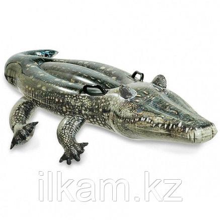 Надувная игрушка Крокодил INTEX, 170 х 86 см, от 3 лет, 57551, фото 2