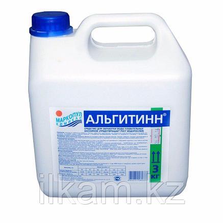 Альгитинн 1 л (Средство от водорослей в бассейне), фото 2