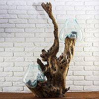 """Вазон стекло на дереве """"Двойная утончённость"""" 100х75х40 см"""