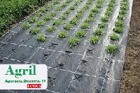 Агроткань AGRIL 100 (1.6*50)