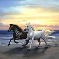 Алмазная мозаика Бегущие кони, 40*50 см