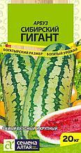 """Семена арбуза Семена Алтая """"Сибирский гигант"""""""