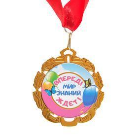 Медаль с лентой 'Выпускник детского сада', D 70 мм - фото 2