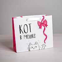 Пакет ламинированный горизонтальный «Кот в мешке», ML 23 × 27 × 11,5 см