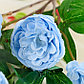 """Цветы искусственные """"Абутилон пышный"""" 5*57 см, голубой, фото 2"""