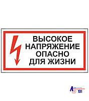 """Знак """"Высокое напряжение опасно для жизни"""" ЭЛ-16"""