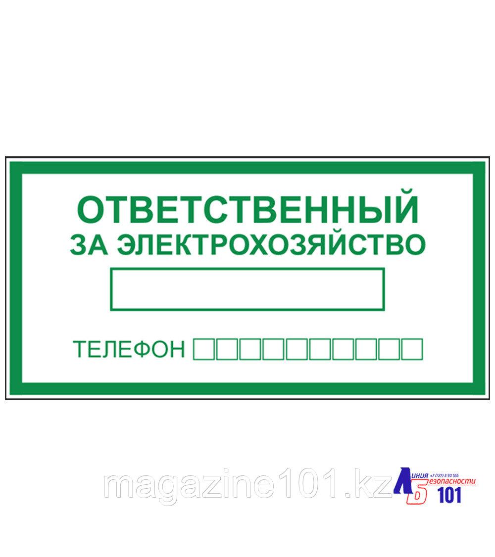 """Знак """"Ответственный за электрохозяйство"""" B-03"""