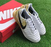 Сороконожки Nike Tiempo X (Серхио Рамос)
