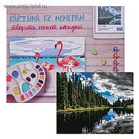 Картина по номерам «Лес у озера» 40х50 см