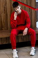 Мужской осенний трикотажный красный спортивный большого размера спортивный костюм GO M3007/11-02.176-182 46р.