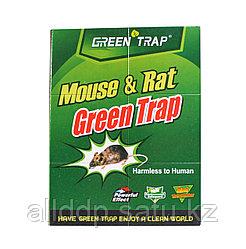 Клеевая ловушка книжка от крыс и мышей