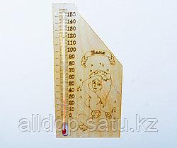 Термометр для бани и сауны, Баня