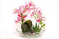 """Композиция в вазочке """"Орхидея"""", h-28см, стекло"""