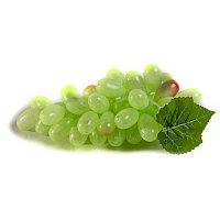 "Муляж ""Виноград зеленый"", h-20см, пластик"