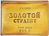"""Студенческий билет """"Золотой студент"""", 11*8,5 см, пластик"""