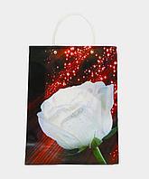 Пакет подарочный ламинированный- 32 х 24 х 8см, бумага