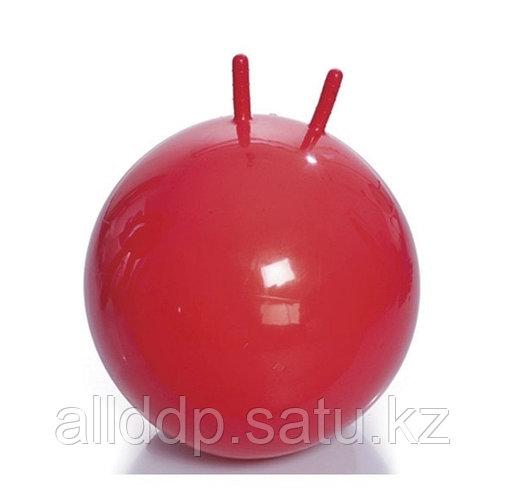 Мяч для фитнеса FUN 55см с ручками WinMax WMF09631